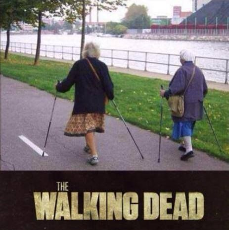 Hahahahahahaha This Is Awesome The Walking Dead Funny Memes