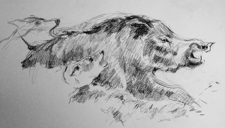 Dibujo A Carbon A Partir De Dibujo Clasico Dibujos A Lapiz Grafito Dibujos Dibujos Con Carboncillo