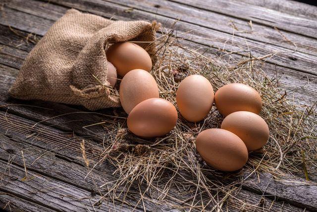Мастер-класс: готовим яйца разными способами