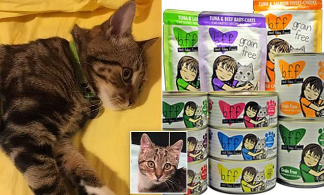 Owners Devastation As Toxic Cat Food Sold At Petbarn Cats Cat Food Vet Clinics