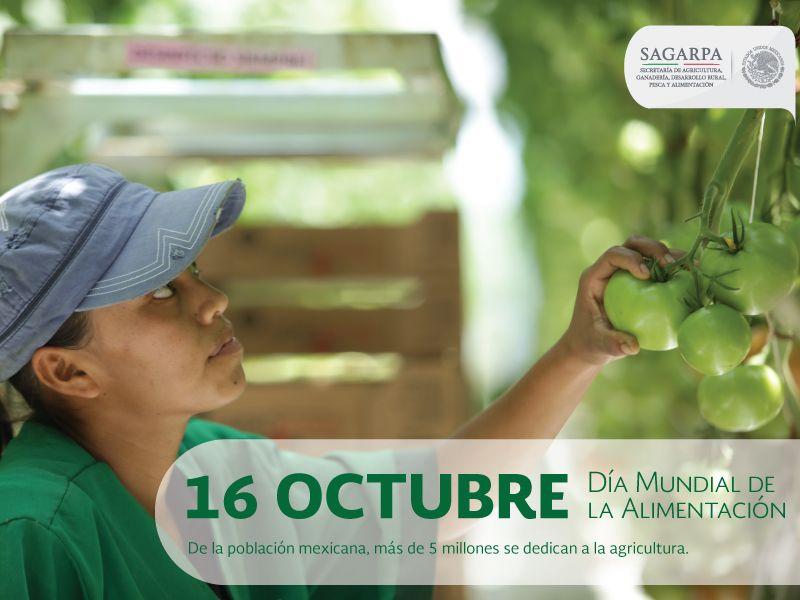Día mundial de la alimentación. SAGARPA SAGARPAMX