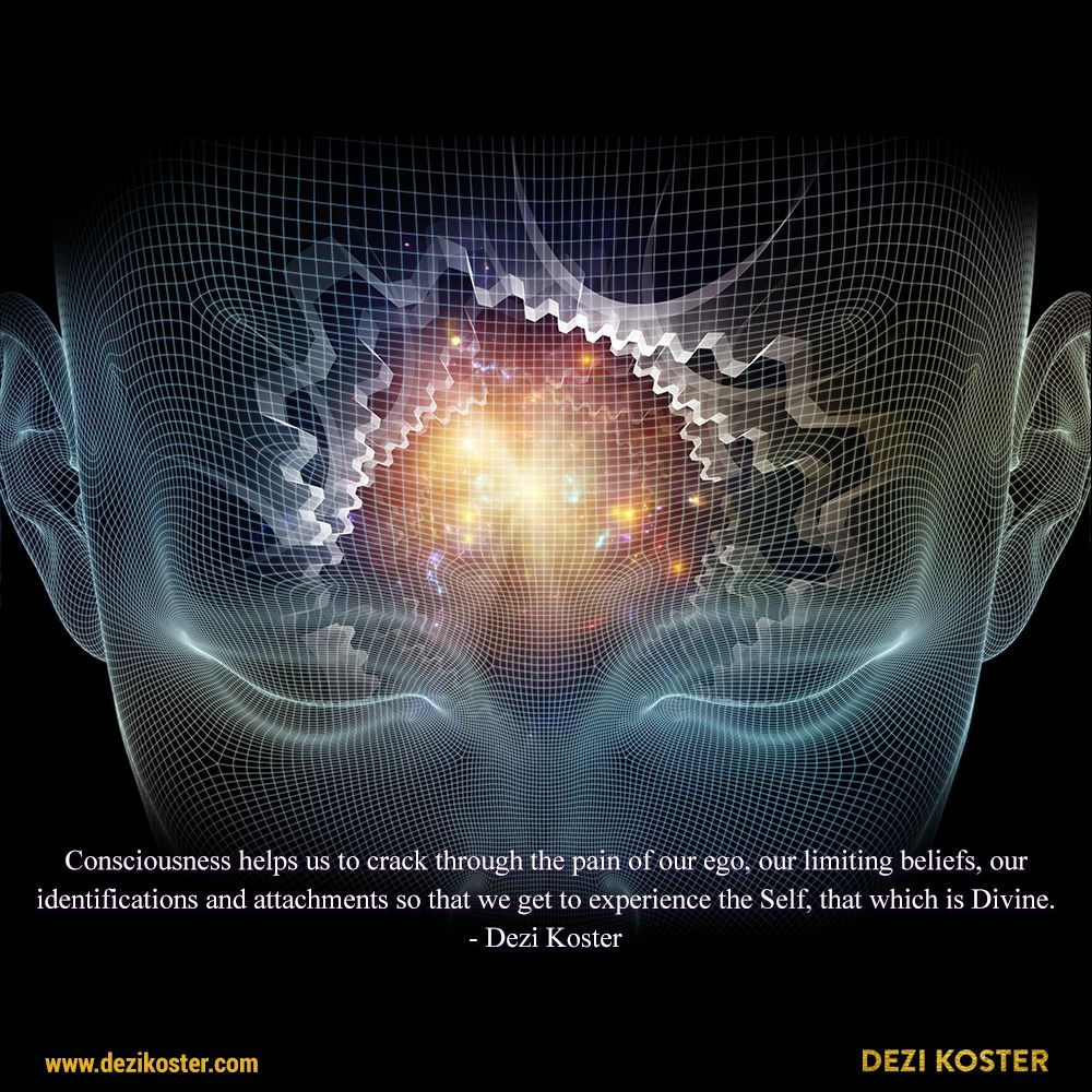 Quote by Dezi Koster consciousness lifeforceenergy