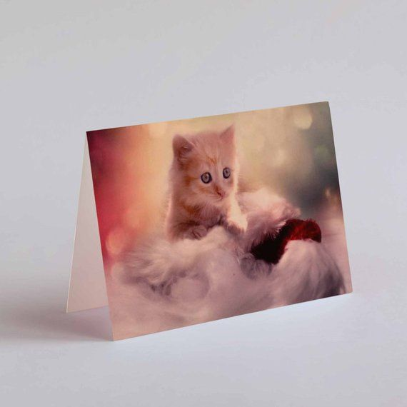 Printed Cute Ginger Kitten Christmas Card, Cat Greeting Card, A6 Tent Landscape Xmas Card, Cat lovers #gingerkitten