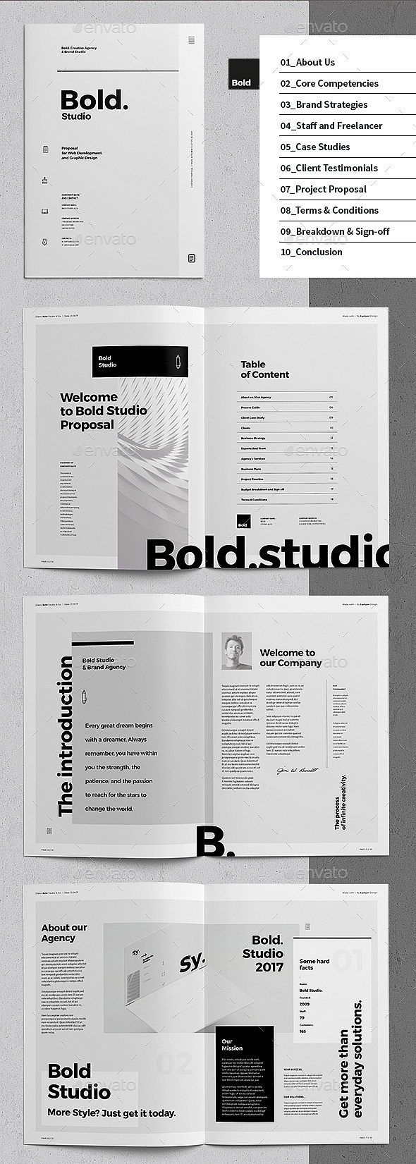 30+ InDesign Business Proposal Templates
