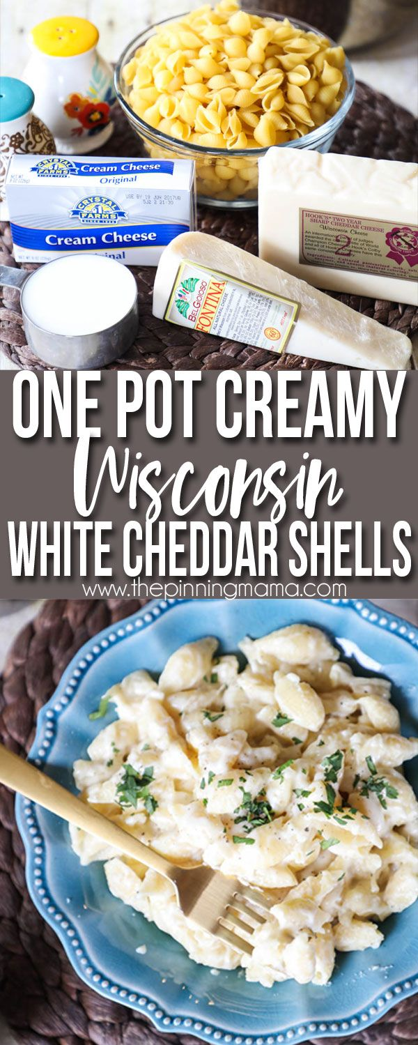 this easy one pot creamy shells and cheese recipe has no