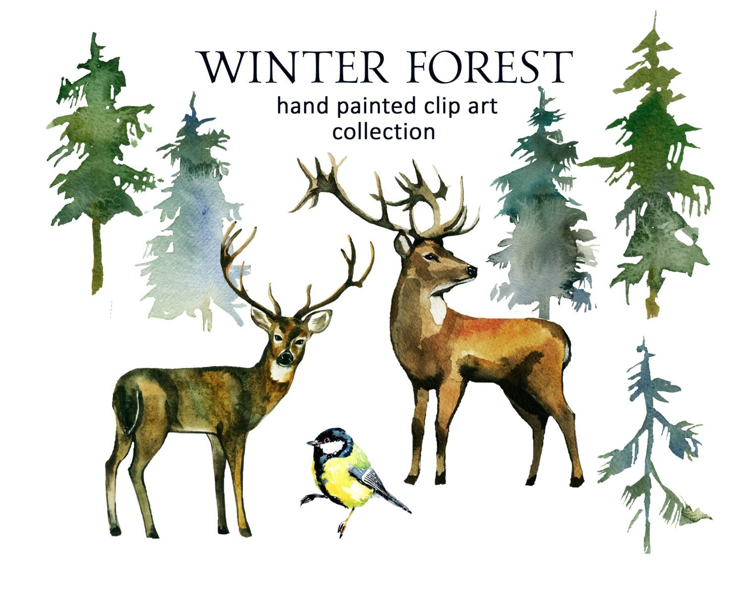 Pine Trees Deer Watercolor Clipart Fir Trees Png Christmas Winter