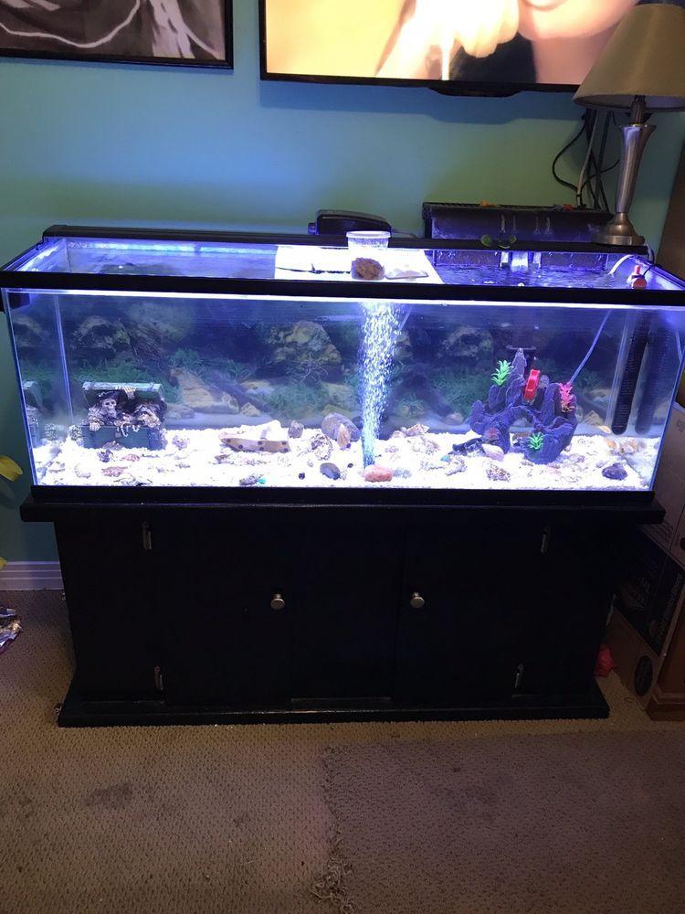 60 gallon led aquarium with accessories wood decor pinterest