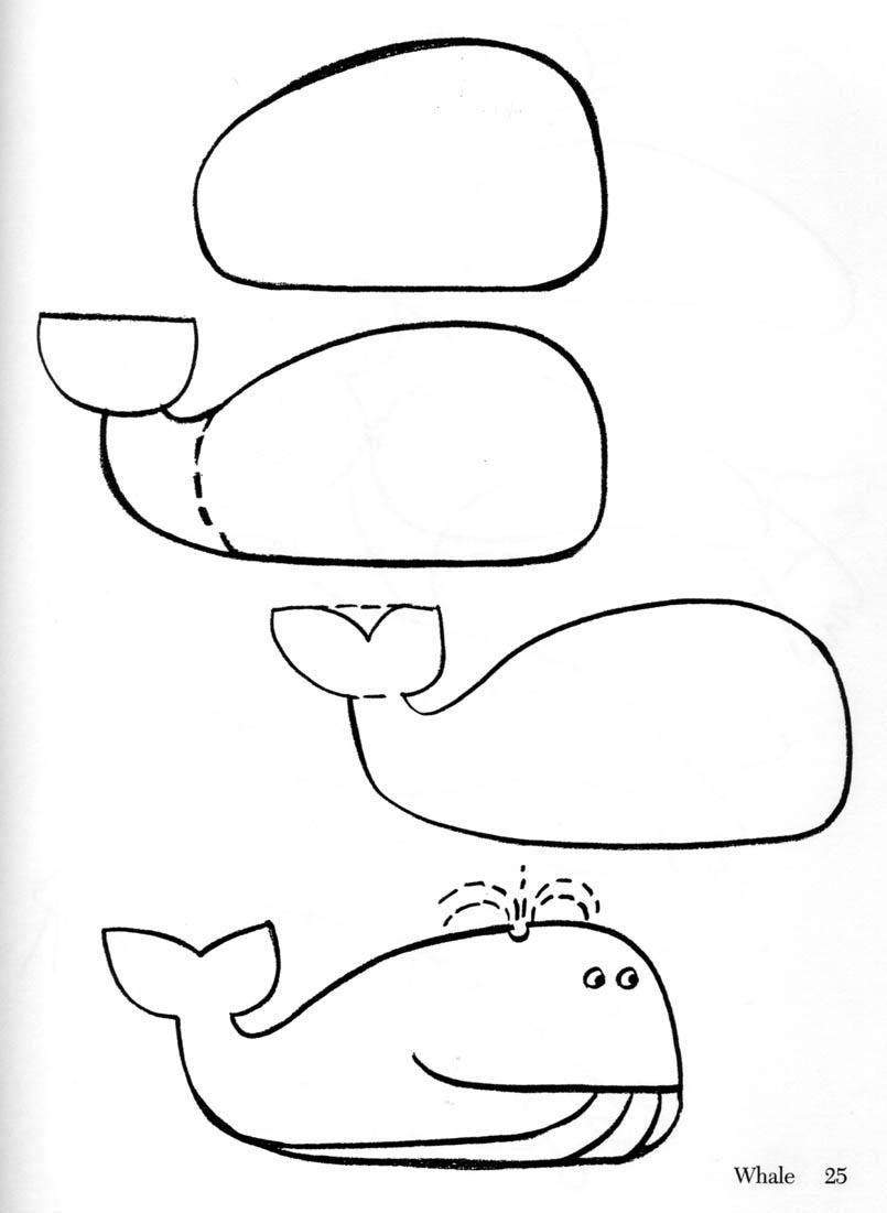 029 how to draw whale and dolphin jpg 805 1101 my drawings