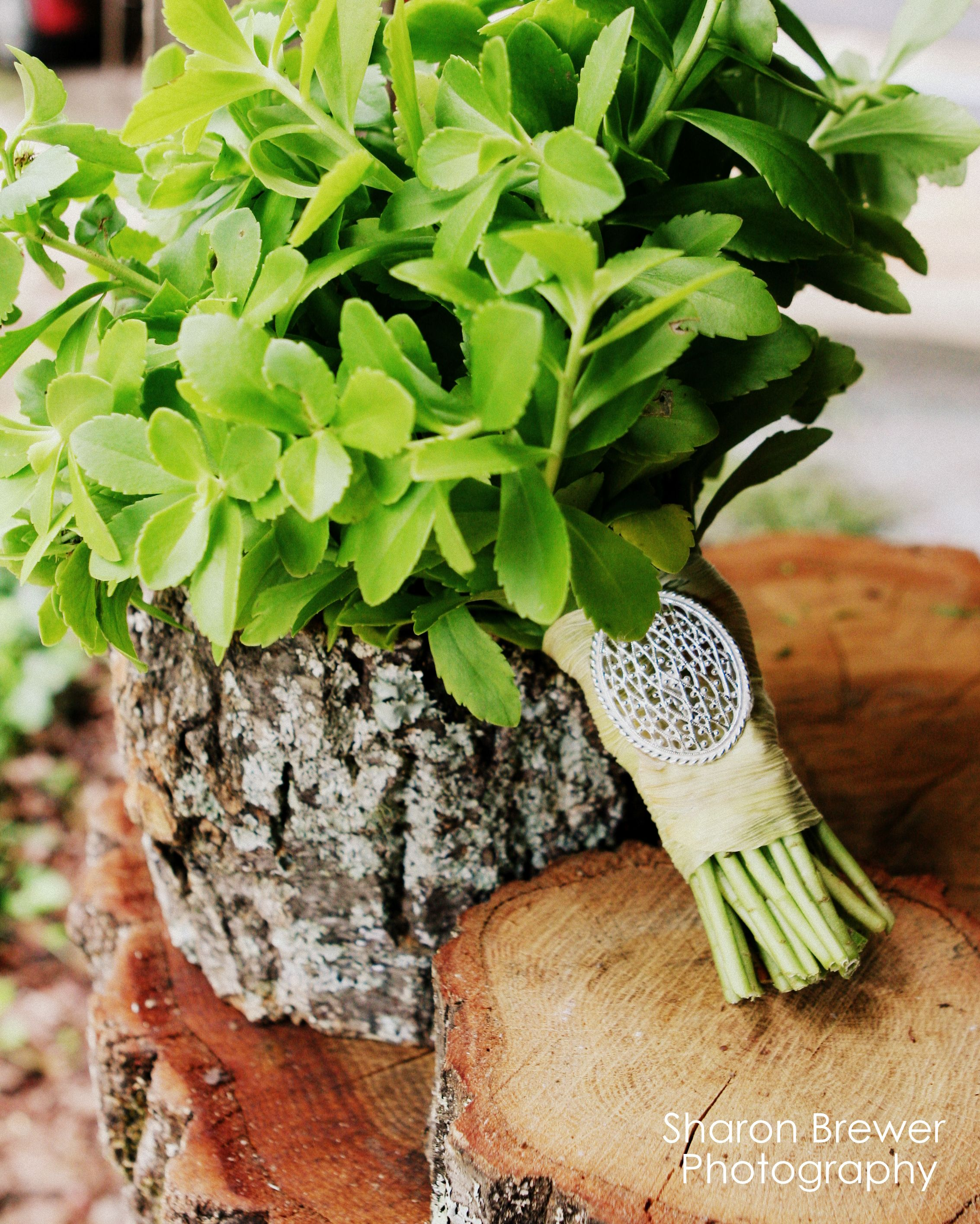 Green (yellow) Sedum, corn husk wrap with silver accent Wedding  Gracious Oaks Bouquet