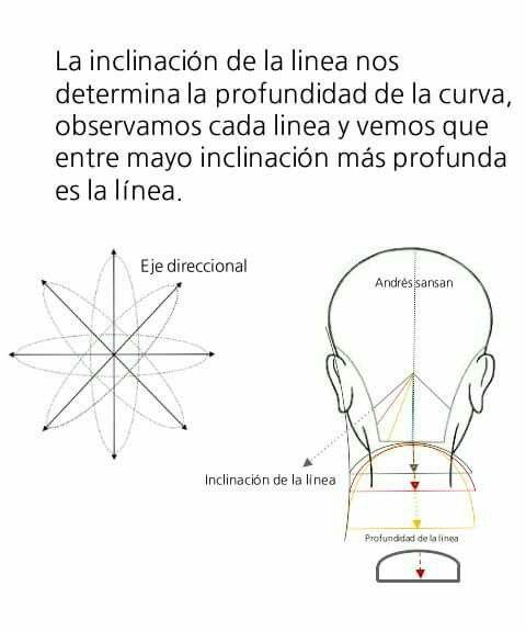 Pin de Andrés SanSan en Diagramas de corte de cabello Andrés SanSan ...