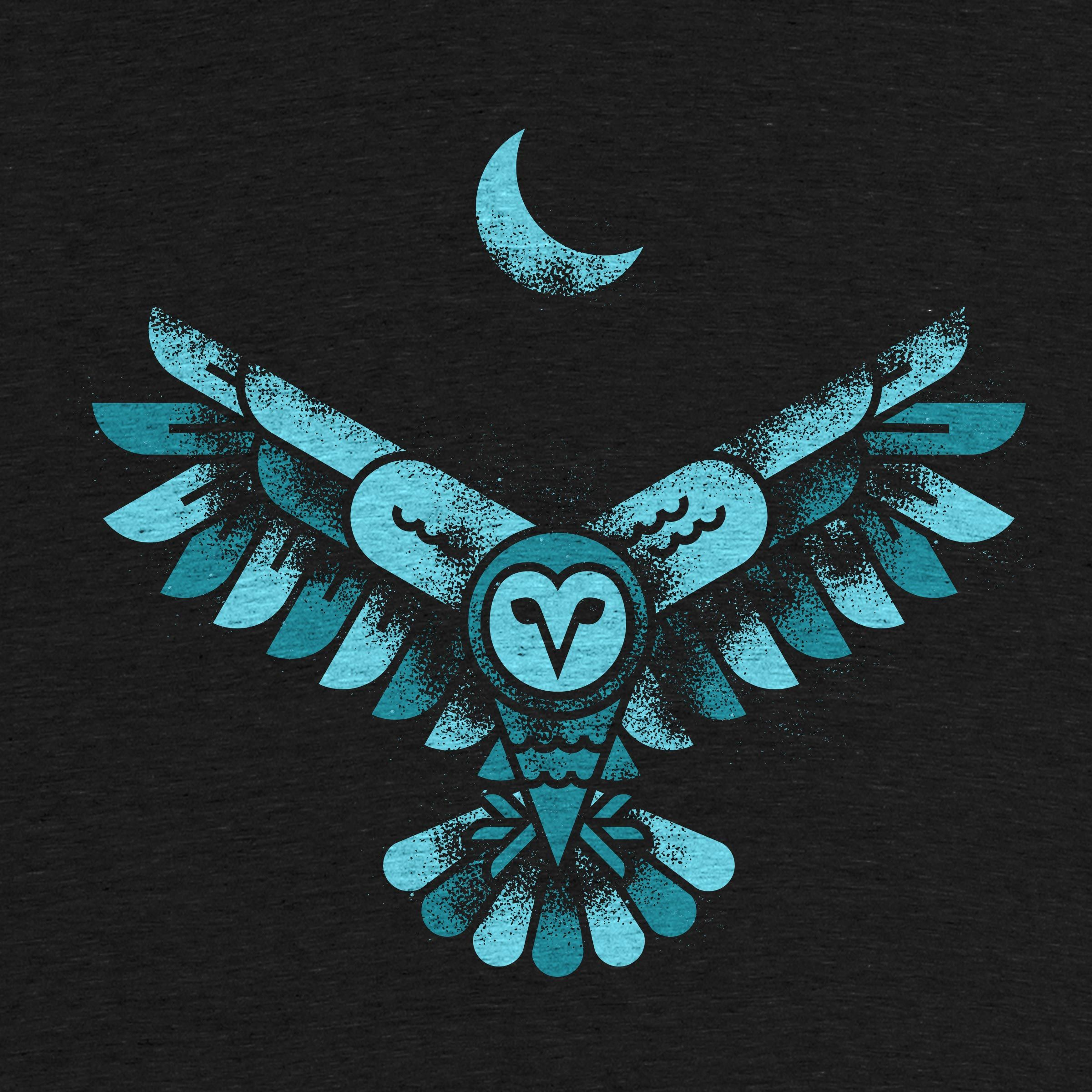 Night Owl by Peter Komierowski Owl wallpaper, Night owl