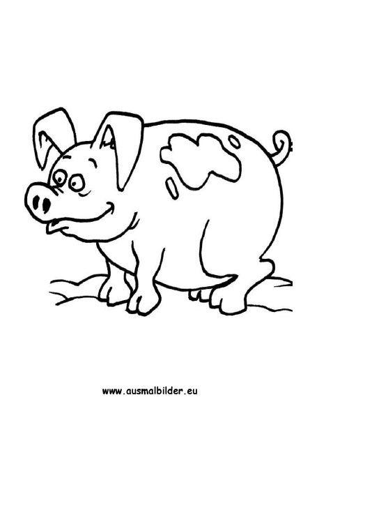ausmalbild schwein zum kostenlosen ausdrucken und ausmalen