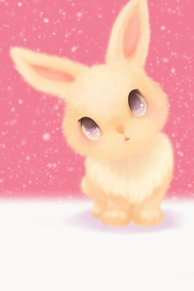 Cute Bunny Cartoon Rabbit Images Iphone Wallpapers Wallpaper Backgrounds