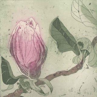 MARTA WAKULA-MAC - Pink Magnolia etching