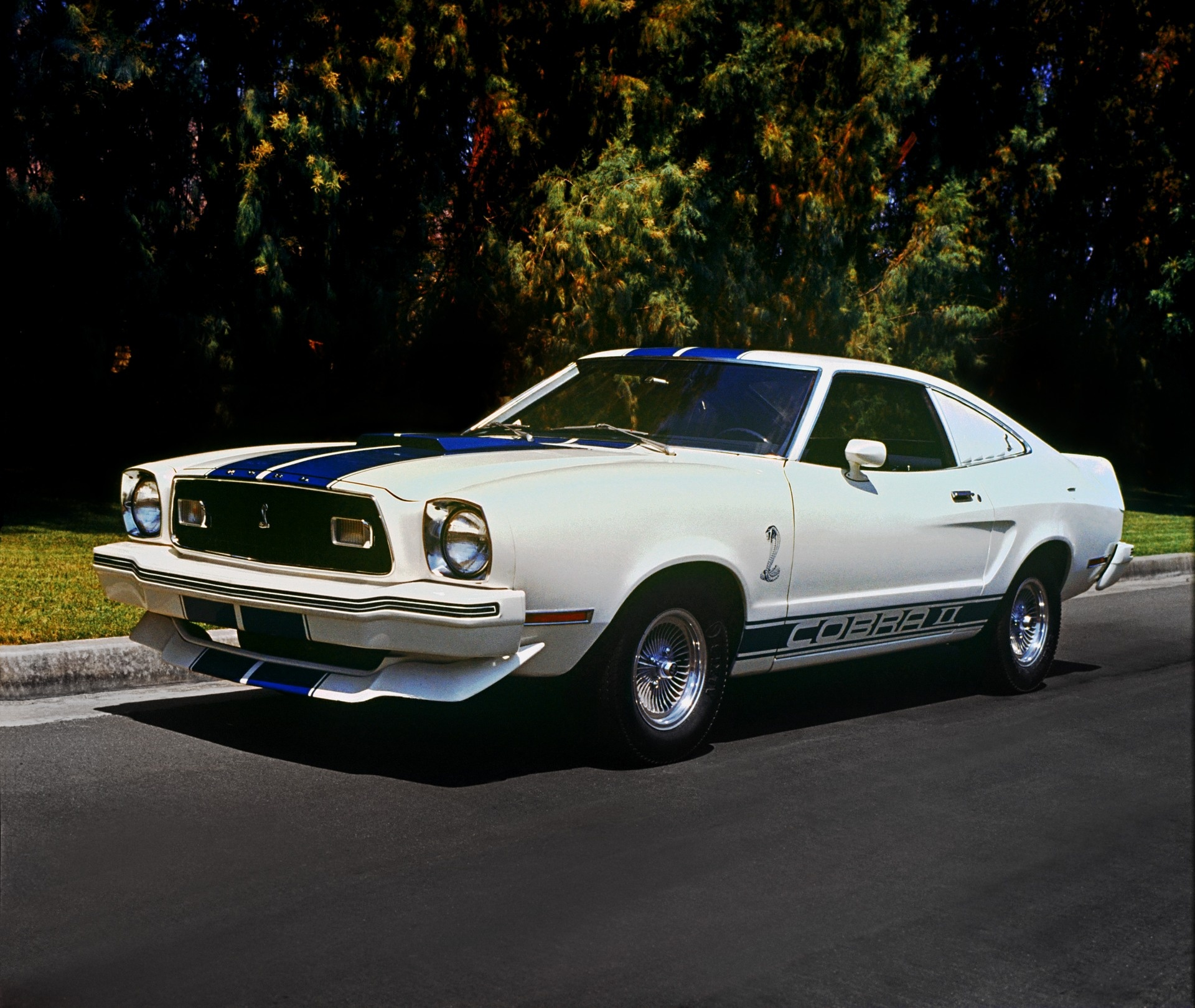 Great Description About 1976 Mustang Cobra for Sale with Cool s
