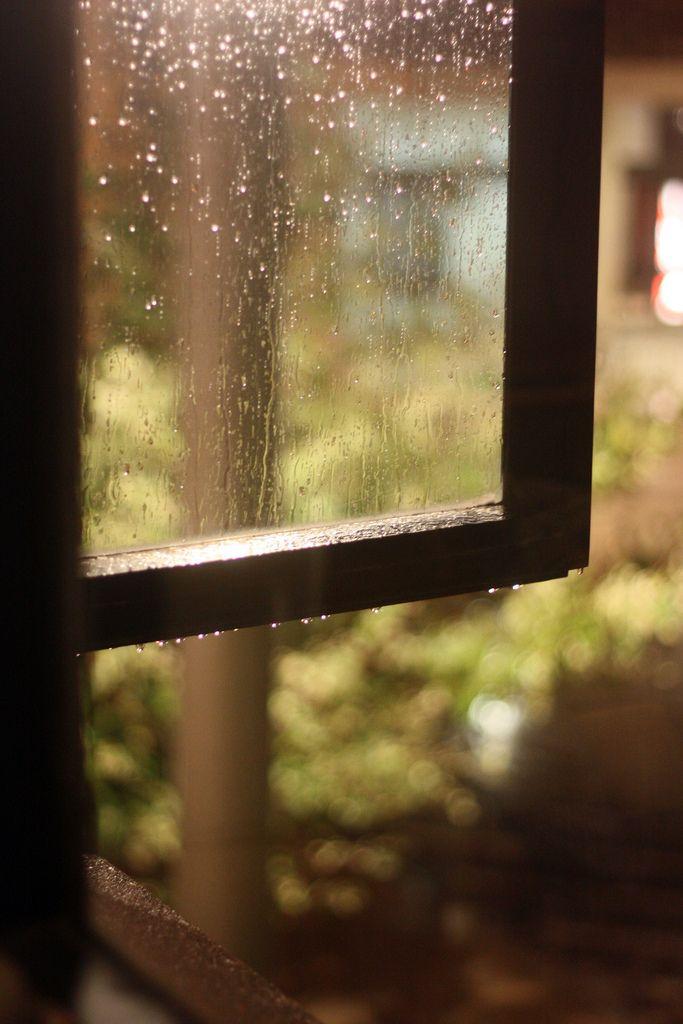 Empezó a llover y decidimos quedarnos en casa a leer. Supimos que eran disparos cuando oímos el grito.