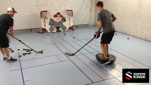 Výsledek obrázku pro bosu hockey