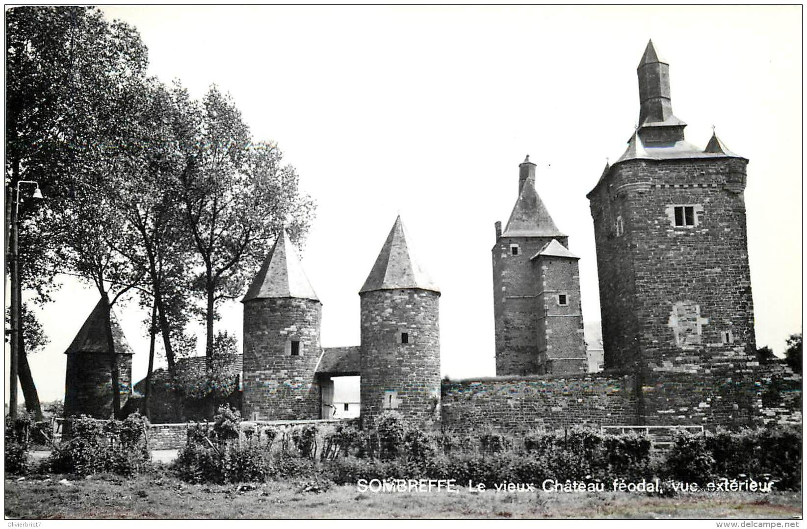Sombreffe - Sombreffe - Le vieux Château Féodal