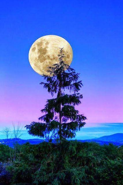 Pin By Dorothy Gerlach On Moon Beautiful Nature Beautiful Moon Nature