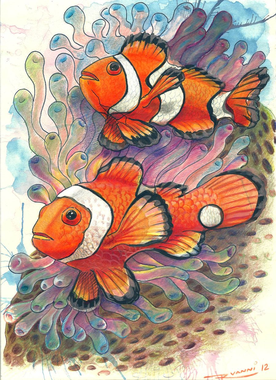 Watercolor And Colored Pencils Painting With Images Fish