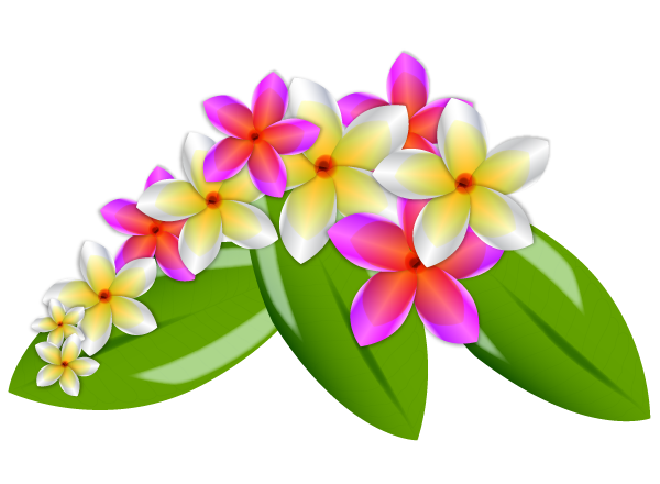 Plumeria Flower Vector Download 1 000 Vectors Page 1 Vector Flowers Flower Clipart Watercolor Flower Vector