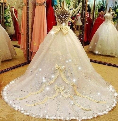 I hate the back of the bodice and the lights, but the bows on the train are nice.