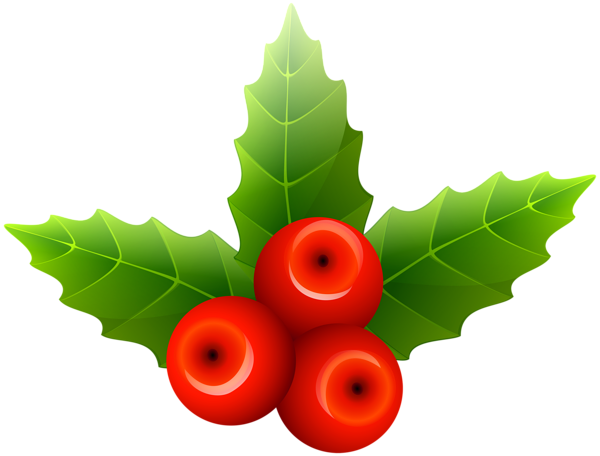 Christmas Holly Png.Pin By Francisco Antonio On Christmas Tree Decoration Png