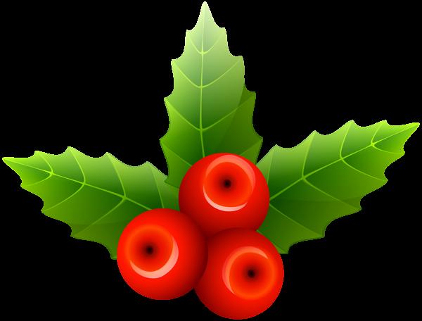 Mistletoe Png Clip Art Image Clip Art Free Clip Art Art Images