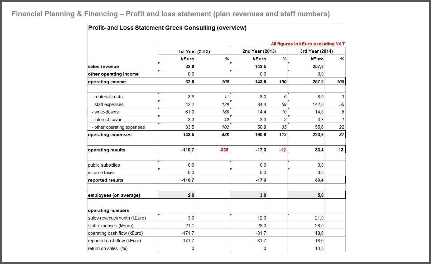 Business Financial Plan Template The Business Plan