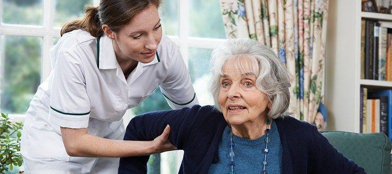 Certified nursing program certified nursing program