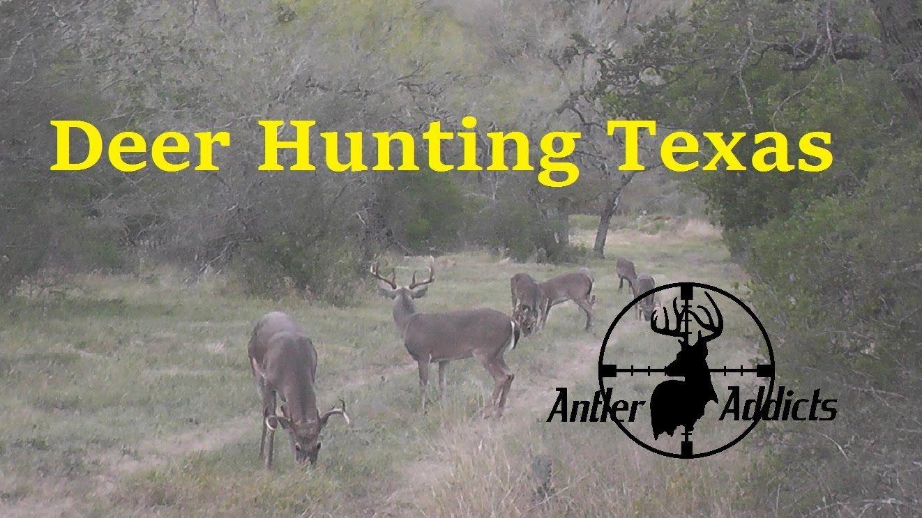 Pin on West Texas Deer Hunting