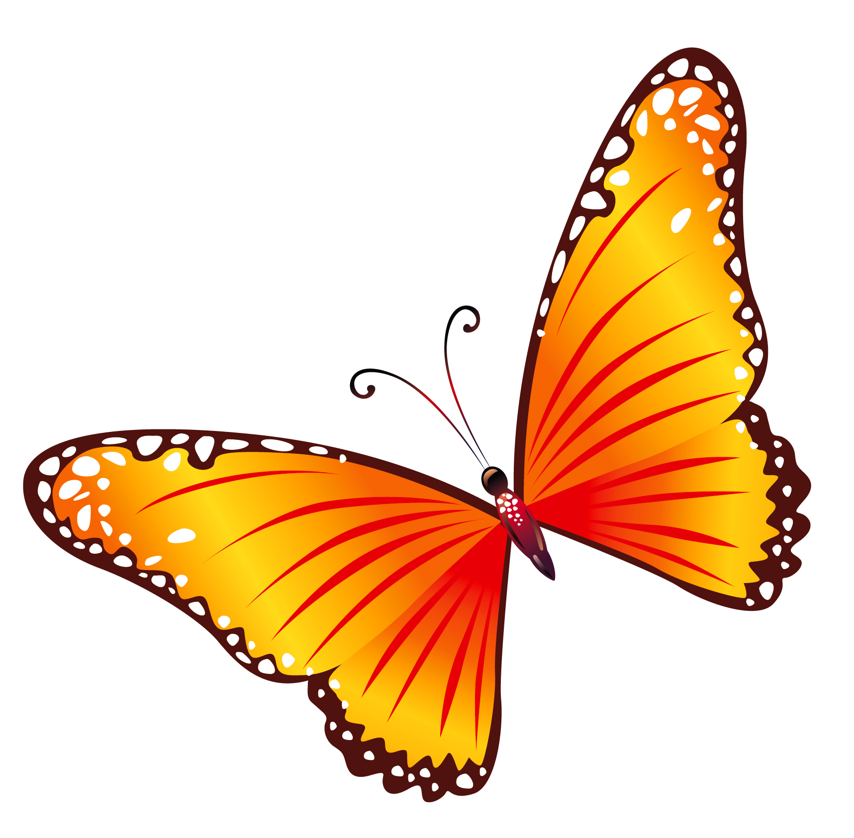 Transparent Orange Butterfly Png Clipart Butterfly Clip Art Butterfly Pictures Cartoon Butterfly