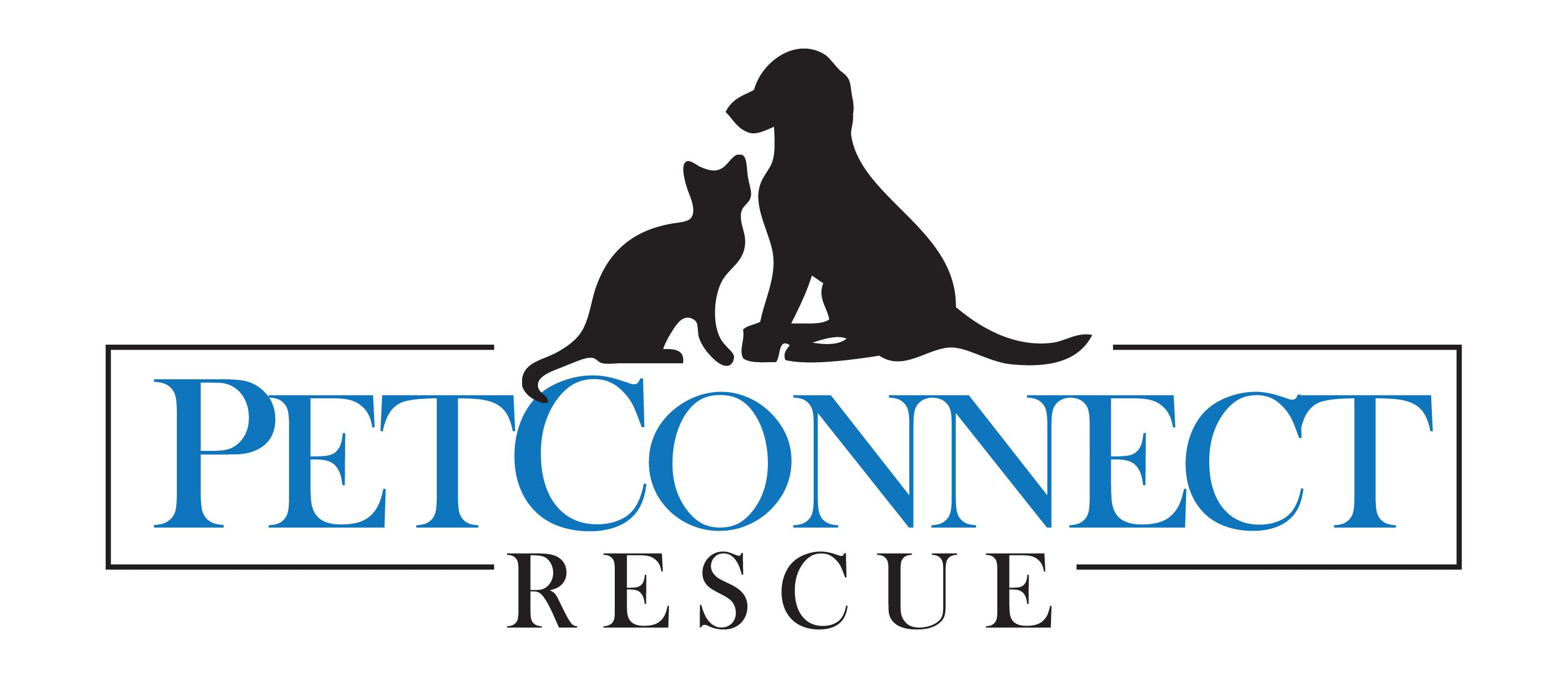 Get to know petconnect rescue animal rescue dog list