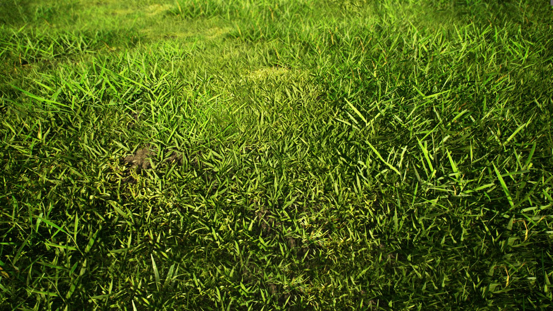 Realistic Grass Pack 01 by dviz in Environments - UE4