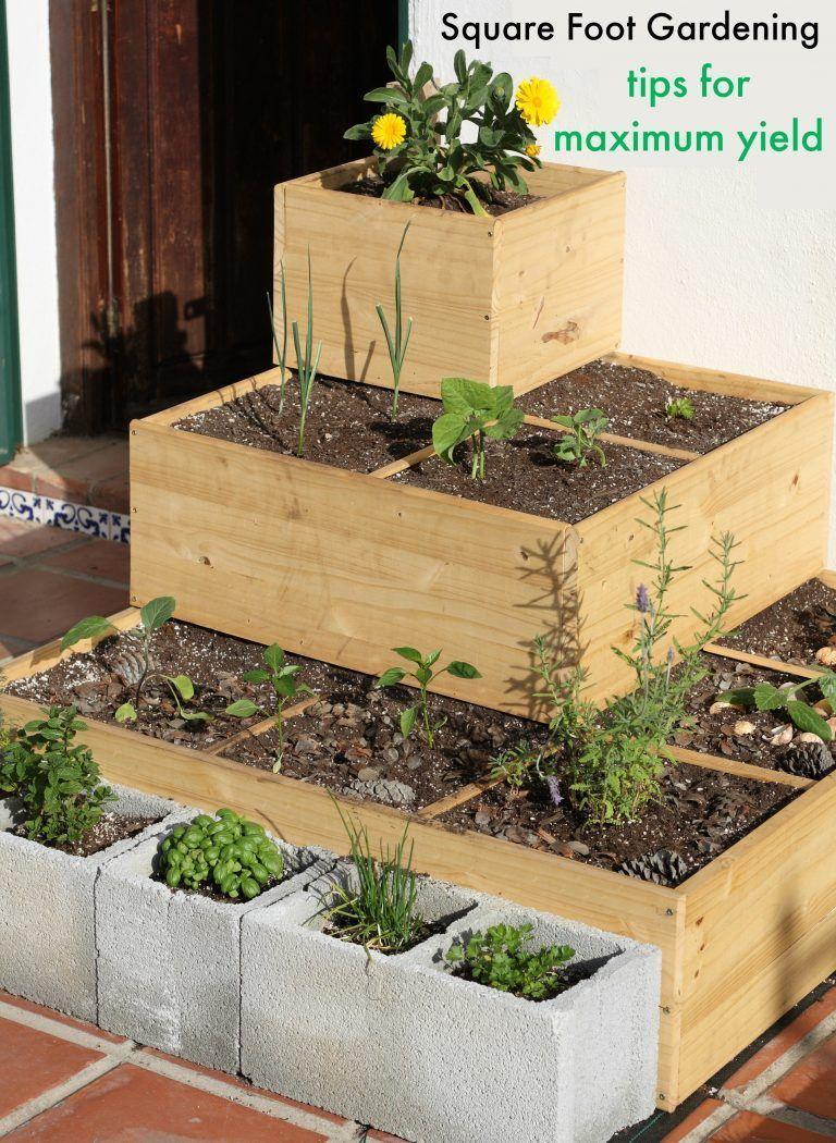 Square Foot Gardening Tips for Maximum Yield #HydroponicsGardening ...