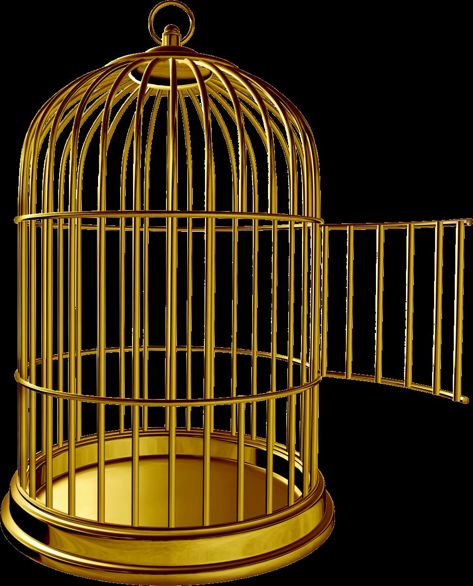 Golden Bird Cage Png Image Purepng Free Transparent Cc0 Png Image Library Gaiolas Para Passaros Passaros Gaiola