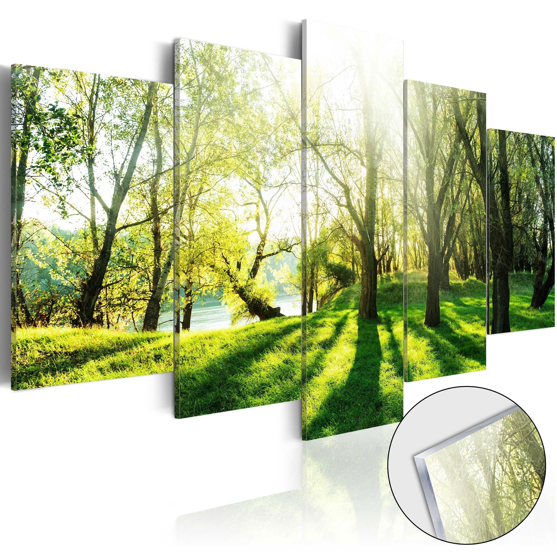 Artgeist Tableau Sur Verre Acrylique Green Glade Taille L 100 X H 50 Cm Lestendances Fr Verres Acryliques Tableau En Verre Parement Mural