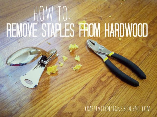 How To Remove Carpet Staples From Wood Floors Removing Carpet Wood Floors Hardwood