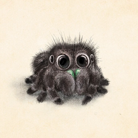Incredibly Cute Animal Illustrations By Sydney Hanson