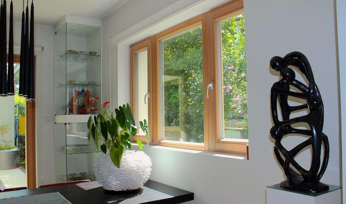 Outdoor Windows / Houses