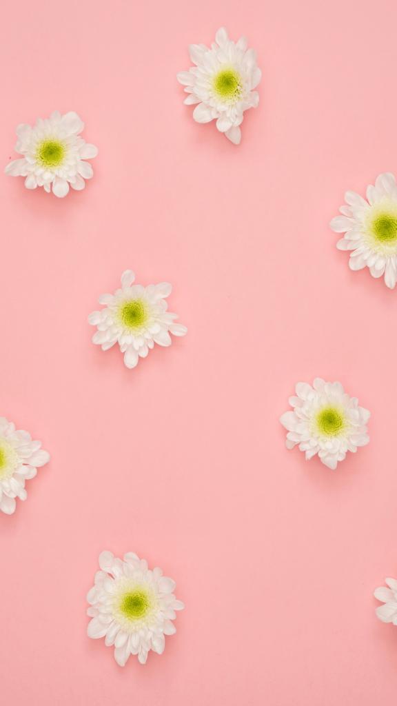 plano de Fundo   wallpaper   template para Stories do Instagram   Valinhos com Crianças