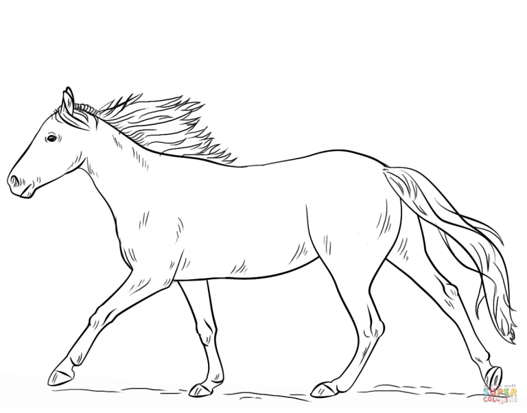 Free Printable Coloring Pages With Quarter Horse Coloring Pages Horse Coloring Horse Coloring Pages Horse Drawings