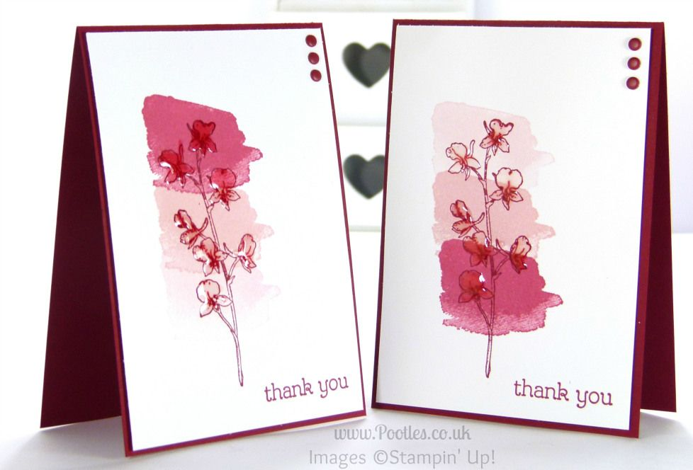 Stampin' Up! UK Pootles - Faded Happy Watercolour Cards. Which Do You Like