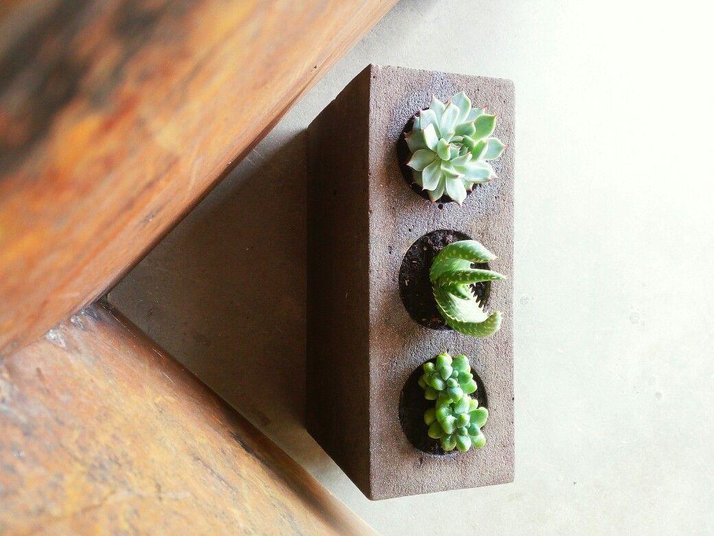 Arredamento Piante ~ Porta fiori cemento piante arredamento artistico piante grasse