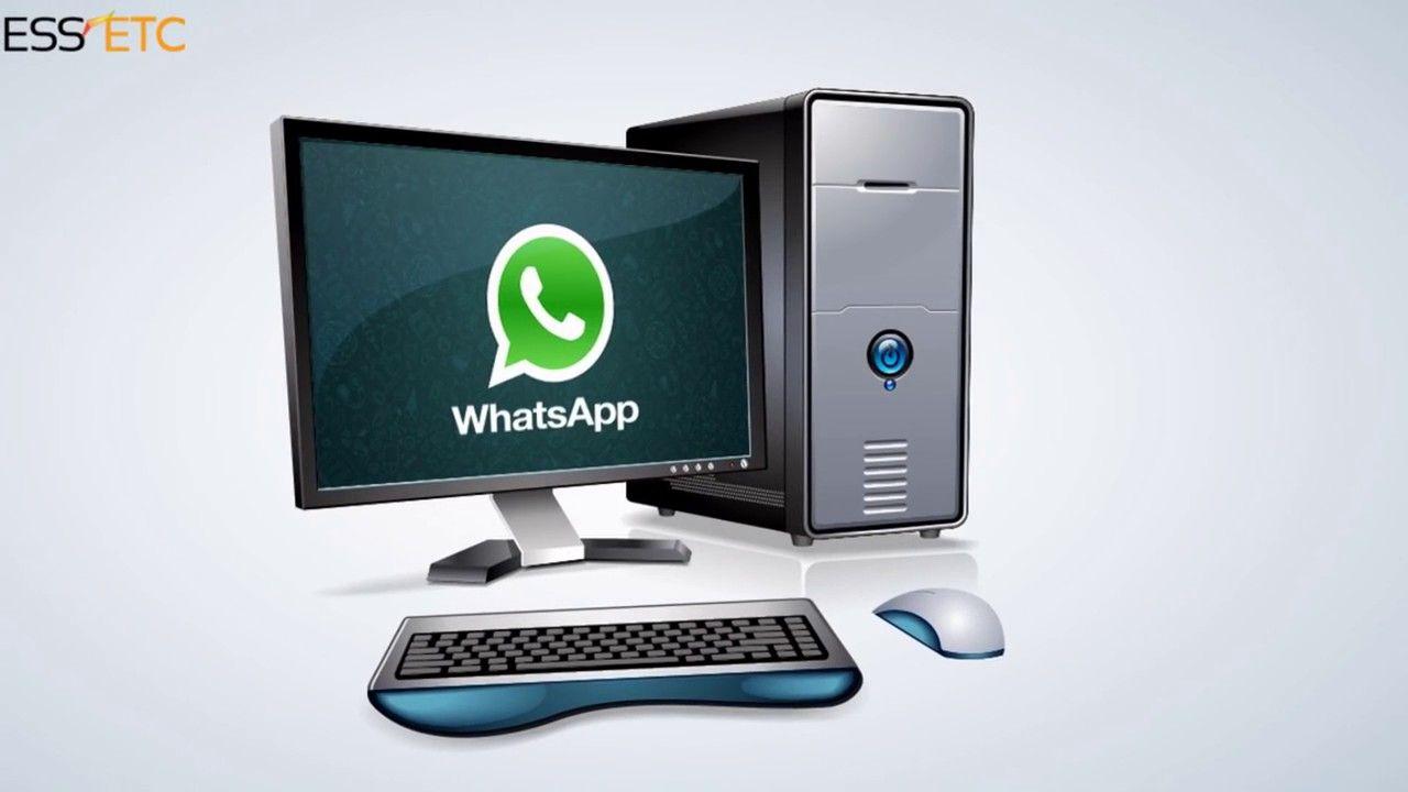 WhatsApp LINE Brand Area Clip art whatsapp icon download