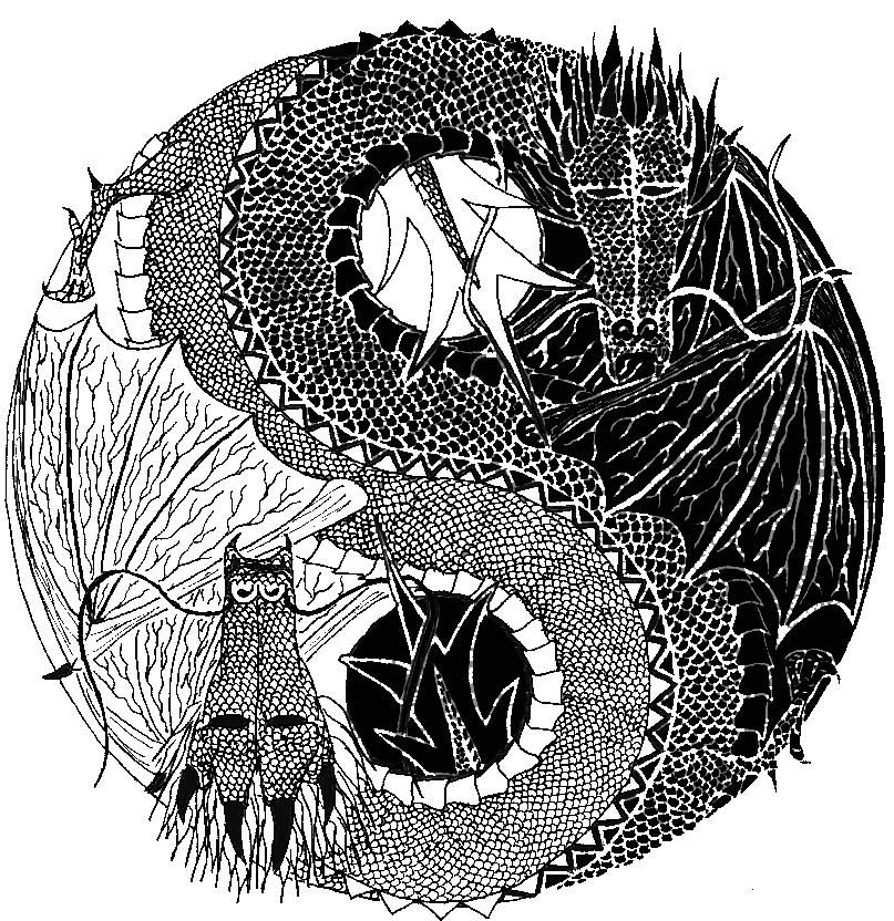 yin yang abstract search feather yin yang