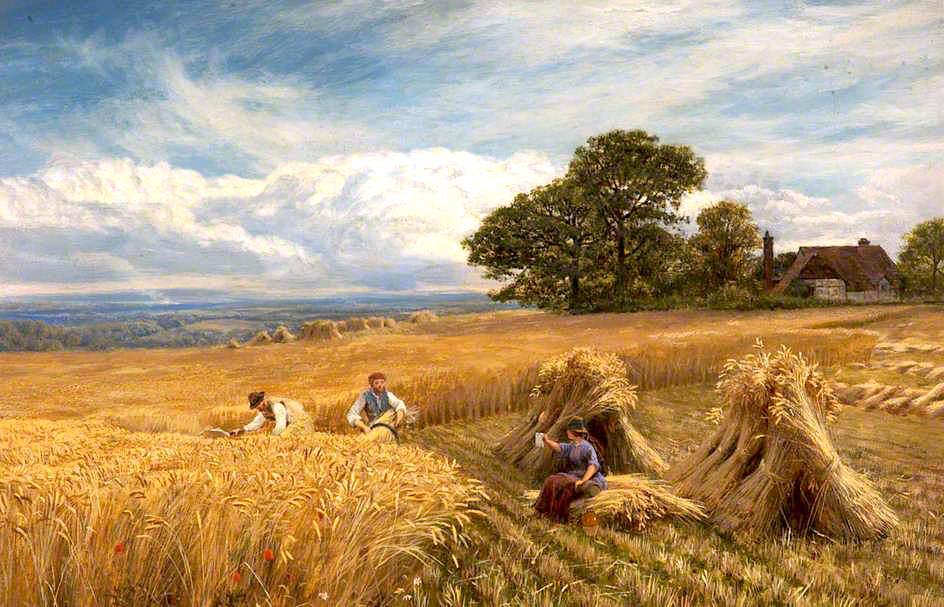 A Surrey Cornfield Vicat Cole 1864 in 2020 Farm