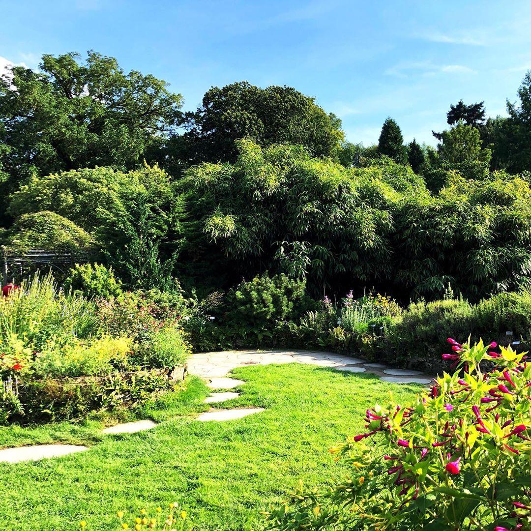 Gartengestaltung Im Botanischengarten In Munster Garten Pflanzen Gartentechnik Gartengestaltung Garten Pflanzen