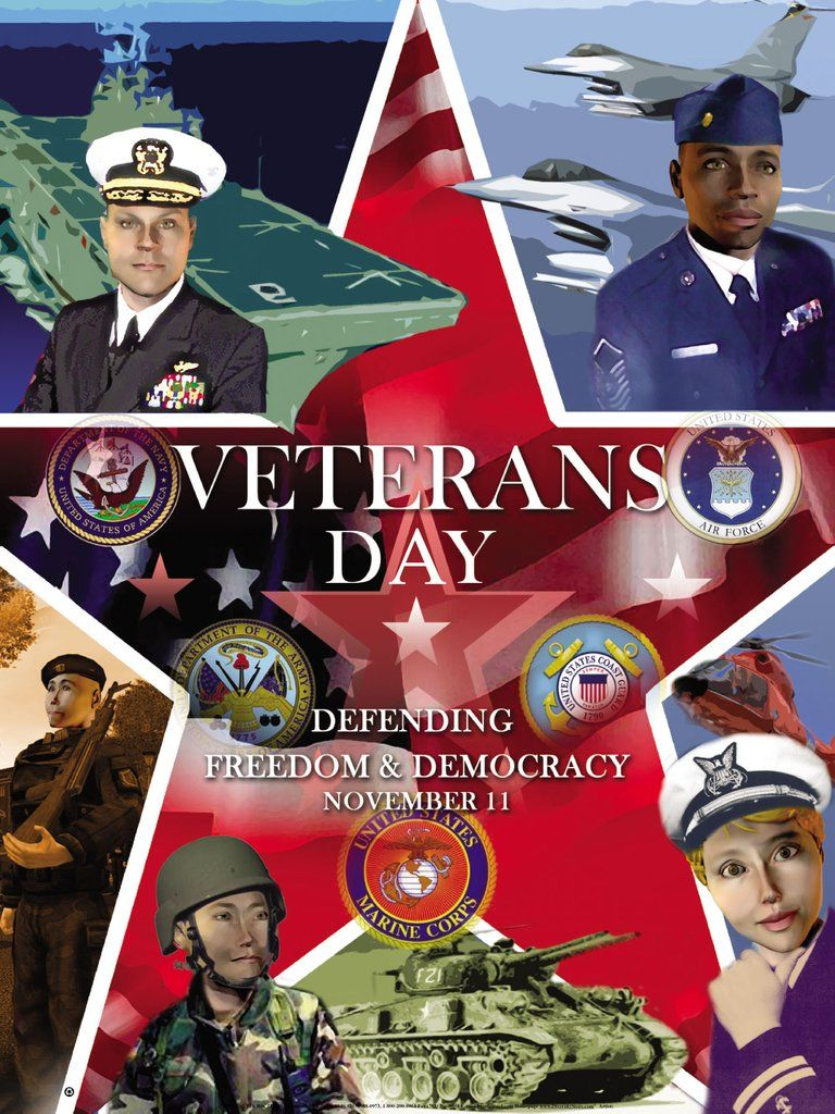 Veterans Day Poster Defending Freedom Democracy Om With
