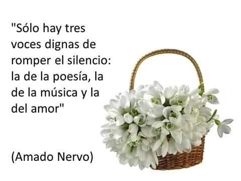 Poesía, música y amor.